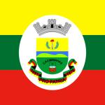 Bandeira da cidade de Pinheiro Machado